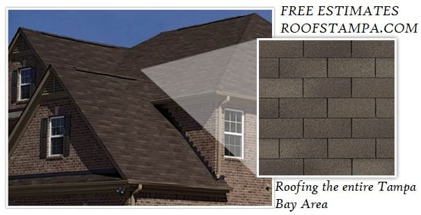 3 tab shingle roof Tampa